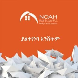 noah-real-estate-1-510x510